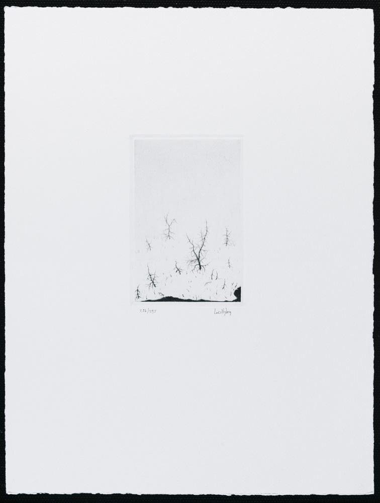 Lars Nyberg konstnär - konstverk 4 - Våga Se Konst