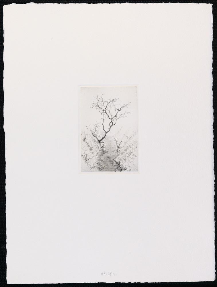 Lars nyberg konstnär - konstverk 2 - Våga Se Konst